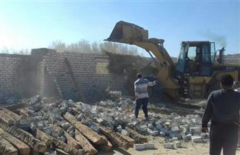 إزالة 51 حالة تعدٍ على الأراضي الزراعية بالإسكندرية