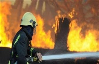 السيطرة على حريق بمزرعة دواجن في بركة السبع بالمنوفية