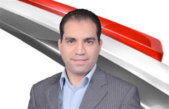 عمرو درويش: مجلس الشيوخ منوط به مراجعة التنمية الاقتصادية والاجتماعية وهو بيت الحكمة