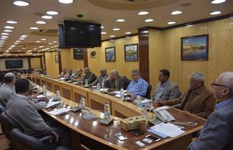 """محافظ أسوان يعقد اجتماعًا مع أعضاء اللجنة التنفيذية لقرى وادى """"النقرة"""""""