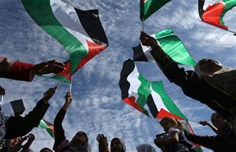 المتحدث باسم الخارجية: اليوم العالمي للتضامن مع شعب فلسطين دعوة لتأكيد حقوقه المشروعة