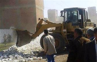 إزالة 9 حالات تعدٍ على الأراضي الزراعية بمركز البلينا في سوهاج