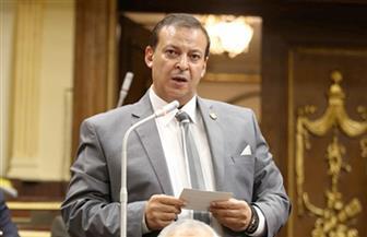 برلمانى يطالب بإسناد ملف توفير المستلزمات والأجهزة والمعدات الطبية للقوات المسلحة