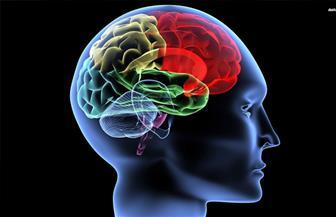 علماء يحددون آلية منع الأفكار غير المرغوب فيها