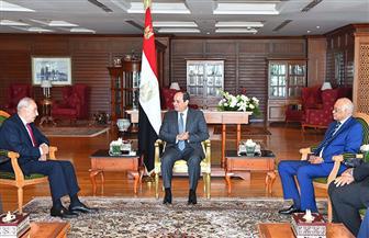 الرئيس السيسي يستقبل رئيس مجلس النواب اللبناني.. ويؤكد اهتمام مصر بالحفاظ على أمن واستقرار لبنان