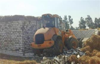 إزالة تعديات على الأراضي الزراعية بمساحة 200 متر بطنطا | صور
