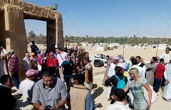كيف تحولت مصالحة الشيخ مدني بين قبائل شرق وغرب سيوة إلى عيد سنوي للحصاد وللسياحة؟