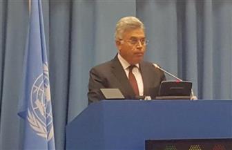 عرفان: مصر في طليعة الدول الداعمة لأجهزة إنفاذ القانون ومكافحة الفساد