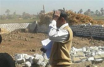 إزالة 12 حالة تعدٍ على أراضٍ زراعية بالبلينا في سوهاج | صور