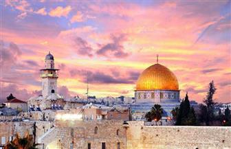 شيخ الأزهر: تصميم مقرر دراسي عن تاريخ القدس لرفع وعي الطلاب والأساتذة بالقضية