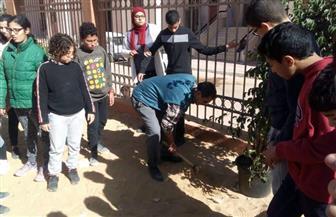 البيئة تشارك في تشجير مدرسة بحي الأسمرات| صور