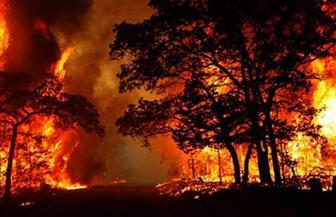 """حريق """"شيطان تسمانيا"""" في كاليفورنيا يقتل رجلي إطفاء وفرار الآلاف"""