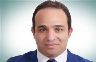 برلماني: العام الجاري سيشهد طفرة اقتصادية والشعب المصري بطل هذه المعركة