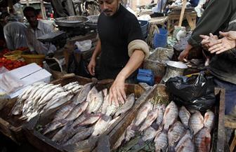 تعرف على أسعار الأسماك اليوم الخميس 11-1-2018