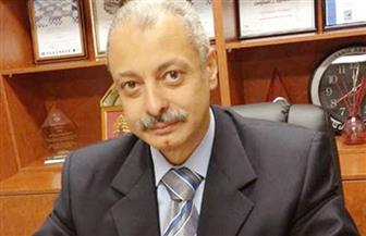 """طيار مصري ينتهز توقف طائرته """"ترانزيت"""" بطوكيو ليشارك فى الانتخابات الرئاسية"""