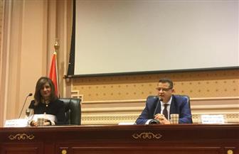 لجنة العلاقات الخارجية بالبرلمان تناقش آليات تنظيم الجاليات المصرية بالخارج