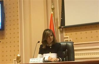 """""""الوطنية للإعلام"""": لا يوجد مرجع يحدد اتحادات المصريين بالخارج"""