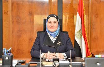 ميرفت سلطان: شراكتنا مع البنك الإفريقي لخدمة الصادرات المصرية