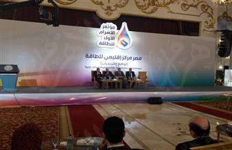 مسئولة بقطاع الكهرباء: مؤسسات التمويل الدولي لعبت دورًا مهمًا في دفع قاطرة التنمية بالقطاع