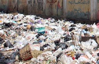 منظومة الشكاوى الحكومية: إزالة أكوام القمامة أسفل كوبري عزبة الخلايفة بالوراق والعزبة البيضاء بالمرج