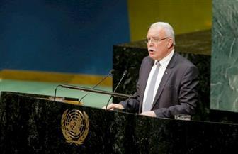 وزير خارجية فلسطين: القرار الأميركي يخدم الحكومة الإسرائيلية ويشجع التطرف والإرهاب في المنطقة