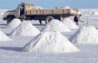 """غرفة البترول باتحاد الصناعات تنظم ورشة عمل حول """"صناعة الملح في مصر"""""""