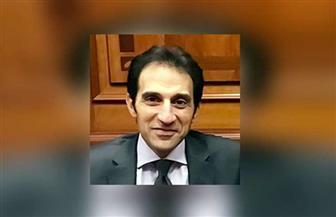 """المتحدث باسم الرئاسة لـ""""بوابة الأهرام"""": مصر تدعم الحكومات المركزية والجيوش الوطنية ضد الميلشيات المسلحة"""