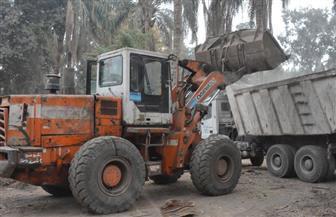رفع 746 طن قمامة من مركز دمنهور