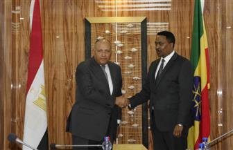 """مصر تقترح مشاركة البنك الدولي في """"ثلاثية سد النهضة"""".. وشكري: قلقون من تعثر المفاوضات"""