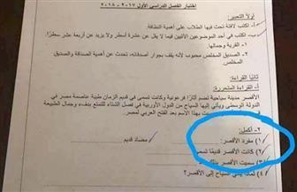 """مفرد كلمة """"اﻷقصر"""" يثير أزمة في امتحان الصف الرابع الابتدائي بالإسكندرية    صور"""