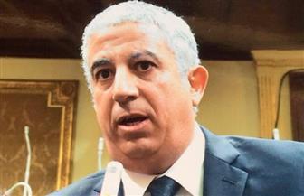 """رئيس """"خارجية النواب"""": الجانب الأمريكي وجد في مصر شريكا نزيها يعمل على استقرار المنطقة"""