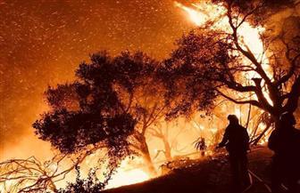 احتواء أكثر من 90% من أكبر حريق غابات تشهده ولاية كاليفورنيا الأمريكية