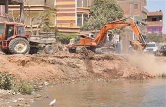 تطهير نهر النيل من 33 ألفًا و122 تعديًا منذ يناير 2015
