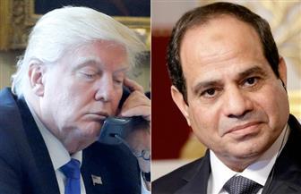 ترامب يؤكد للرئيس السيسي تضامن أمريكا مع مصر في حربها ضد الإرهاب