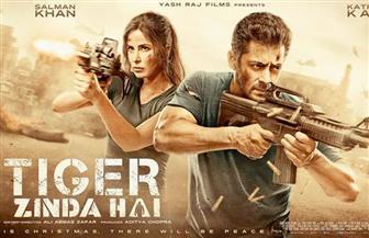 الجاسوسية تعيد الأفلام الهندية إلي السينما المصرية