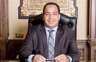 عبدالمنعم السيد: ربحية المشروعات بمصر ستكون أعلى من نظيرتها في أي دولة أخرى