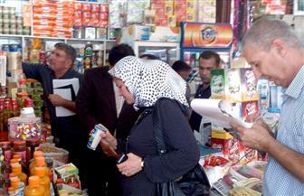 ضبط سلع فاسدة ومجهولة المصدر في حملة على أسواق الإسكندرية