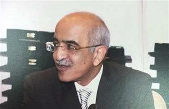 إمام السعيد رئيسا لجهاز المشروعات الصناعية والتعدينية لمدة عام