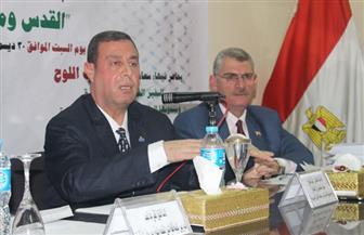 السفير الفلسطيني: الدبلوماسية المصرية نجحت في إدارة الأزمة الفلسطينية بمجلس الأمن رغم الإرهاب الأمريكي | صور