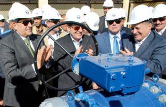 وزير البترول: سوهاج أصبحت مستقلة في إنتاج البوتاجاز| صور