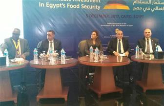 """ممثل """"الفاو"""": نبحث حلولًا لرفع كفاءة القطاع الزراعي بمصر بشكل قوي"""