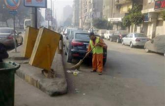 رفع كفاءة النظافة والإنارة بشارع جامعة الدول العربية | صور