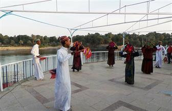 محافظ أسوان يشهد انطلاق فعاليات اليوم الأول لليالي الثقافية بحديقة النباتات   صور