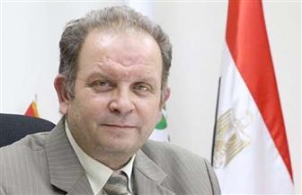 الريف المصري: الطرح الثانى من مشروع المليون ونصف المليون فدان قبل نهاية ديسمبر الحالى