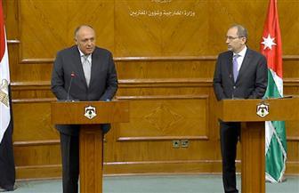 شكرى يلتقى نظيره الأردنى قبيل اجتماع الجامعة العربية الطارىء