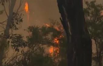 إخماد حريق نشب بمزرعة عنب ملك أستاذ جامعي بالفيوم