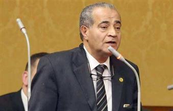 فتح باب الترشح لانتخابات مجلس النواب على مقعد المصيلحي بأبو كبير لمدة 7 أيام