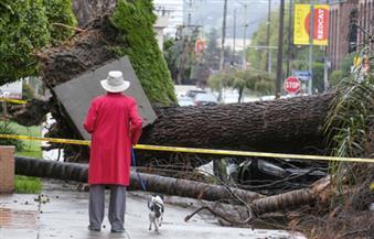 مصرع أربعة أشخاص على الأقل إثرعاصفة بولاية كاليفورنيا