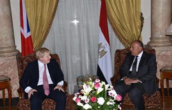 شكري لـ جونسون: استمرار توقف الطيران البريطاني عن مقاصد السياحة المصرية رغم التقدم في تأمين المطارات غير مفهوم