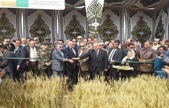 """لجنة سياسات """"الري"""" تُوصي بإرسال تجربة القمح بالتبريد إلى مجلس الوزراء والتعاون مع الجهات المختصة للتقييم"""